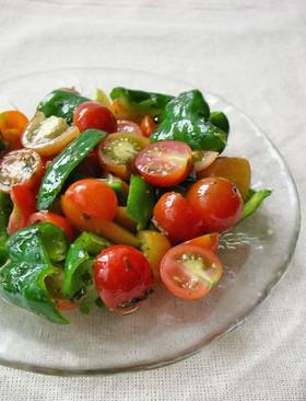 育毛レシピ ビタミンサラダ